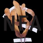 Herbář archivní rozpačitosti: Umí se NFA otevřít veřejnosti?